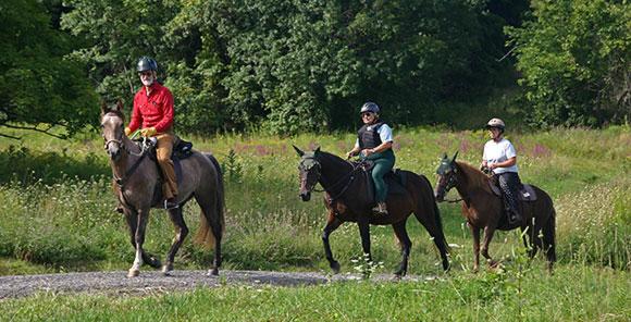 visit-us-horse-ride
